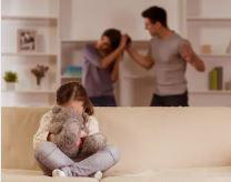 domestic violence Florida